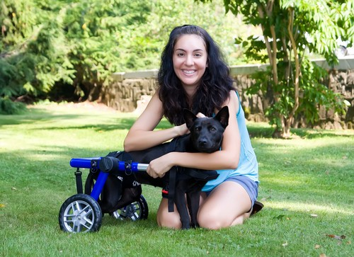 DOG-WHEELCHAIR-HANDICAPPEDPETS-COM
